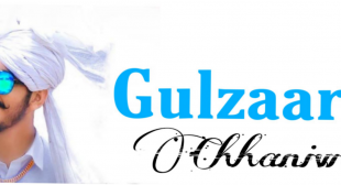 Gulzaar Chhaniwala Songs