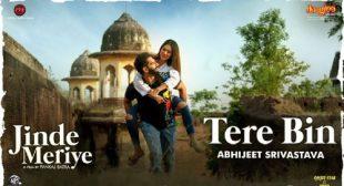 Tere Bin Lyrics by Abhijeet Srivastava