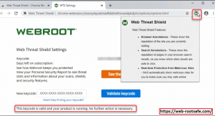 How To Install Web Threat Shield Chrome Browser Extension? Www.webroot.com/safe