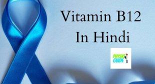विटामिन B12 किसमें पाया जाता है – 5 best vitamin b12 foods in hindi
