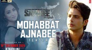 Mohabbat Ajnabee Sayonee Lyrics in English – lyricsalarts